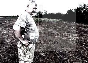 Атаман Козицын посадил сливы, а выросла трехметровая конопля