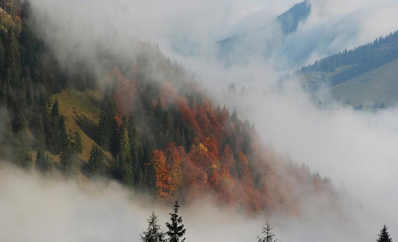 01 - Карпаты Фото с сайта carpathians eu