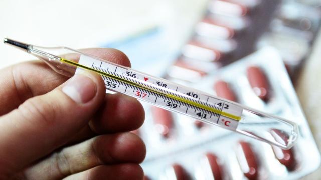 С начала года в Луганске от гриппа умерли 4 человека
