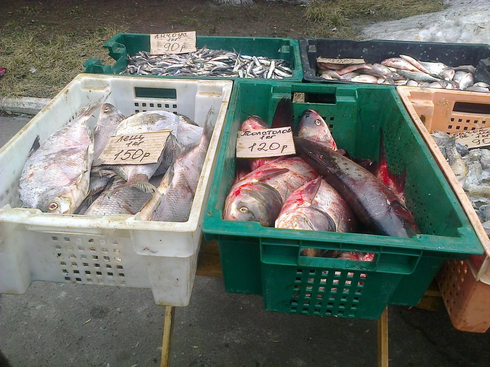 Фотофакт: Сколько стоят продукты в оккупированном Донецке