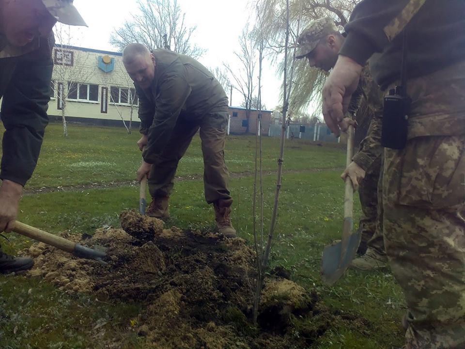 Украинские военные присоединились к озеленению прифронтовых поселков