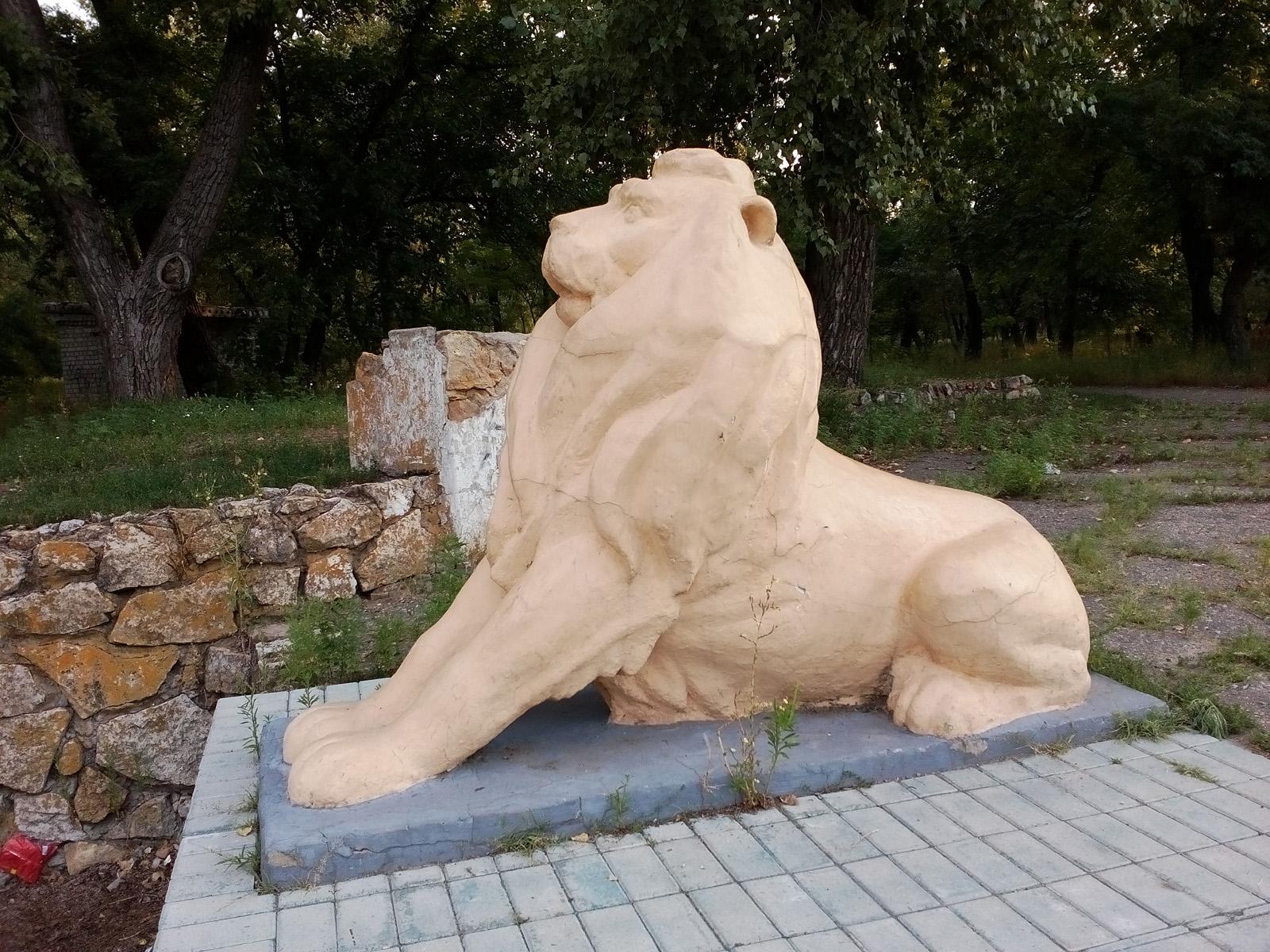Львы охреневают