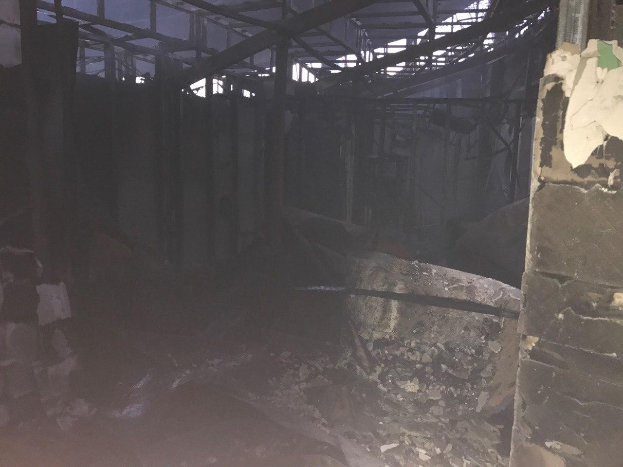 В Донецке сгорел дельфинарий «Немо» (фото)