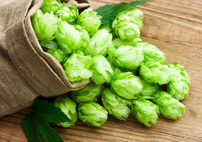 В «ЛНР» продавцов пива обязали платить дополнительный сбор