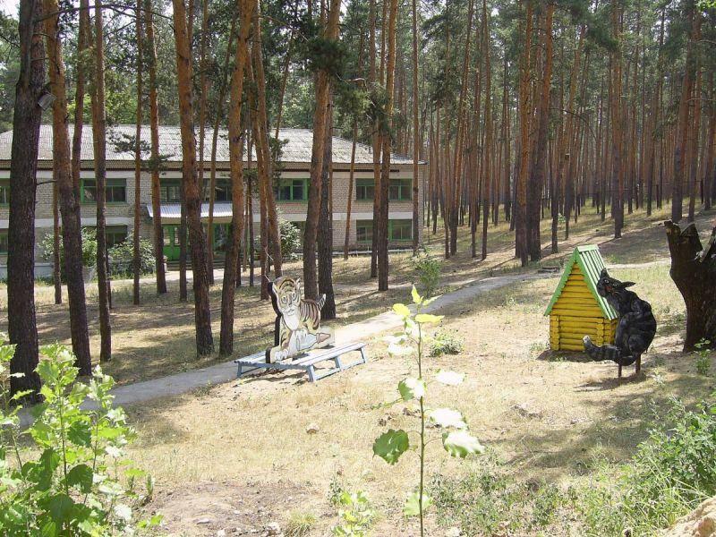 Не столько лагерь Мечта в заповедных Кременских лесах, сколько лес в лагере