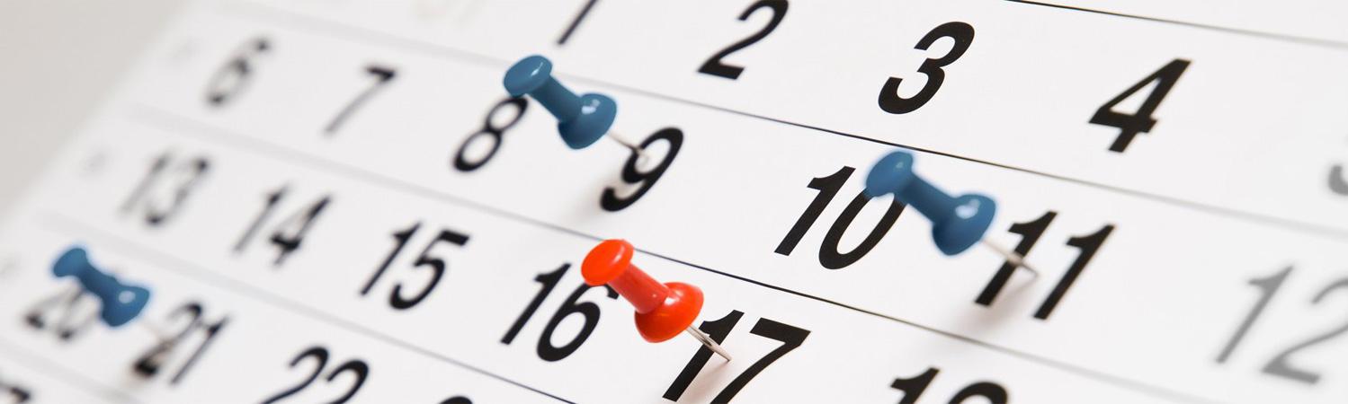 О каких сроках должен помнить переселенец? ИНФОГРАФИКА