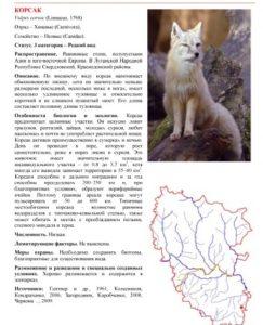 Биологи «ЛНР» опубликовали свою Красную книгу