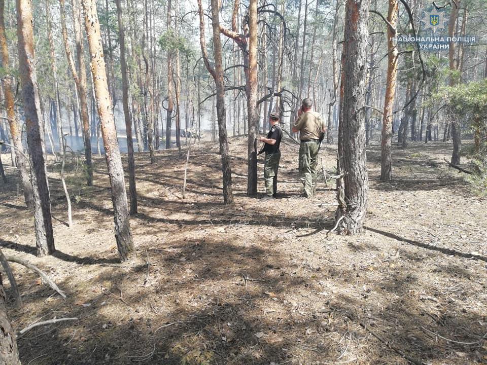 На Луганщине горел лес