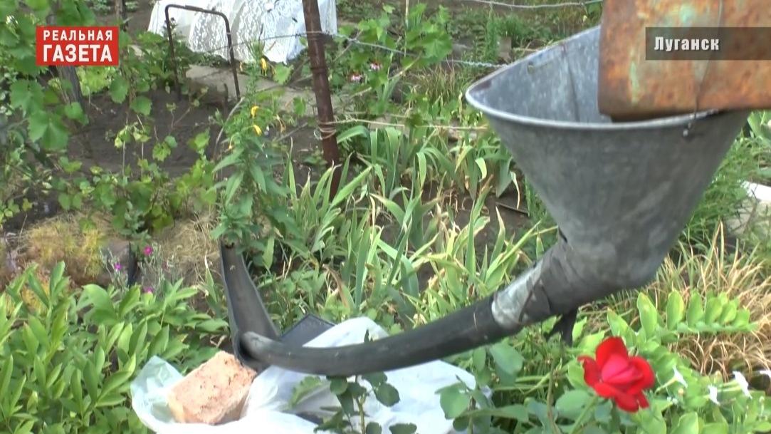 Луганские дачники. Без воды (ВИДЕО)