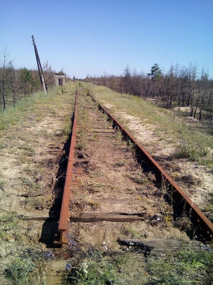 В Станично-Луганской райгосадминистрации показали спиленные железнодорожные пути