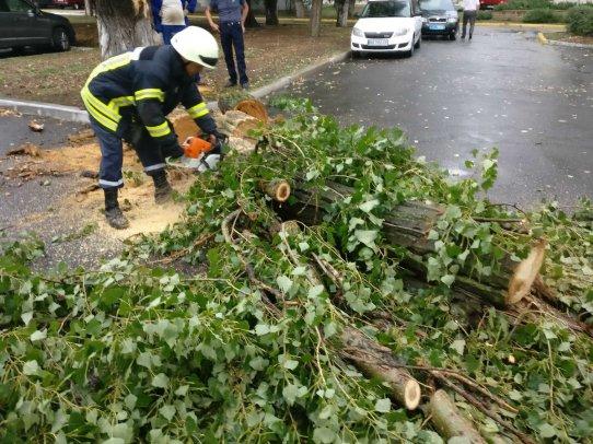 Как на Луганщине ликвидировали последствия бури