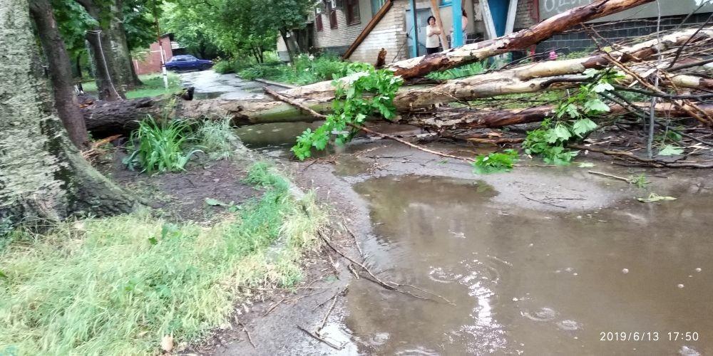 В соцсетях показали последствия урагана в Луганске