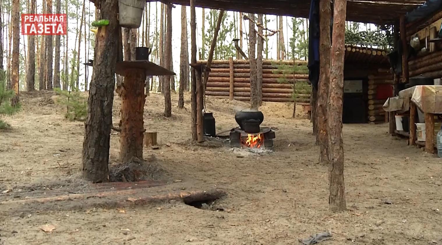 Выборы и «хлебное перемирие» на Луганщине