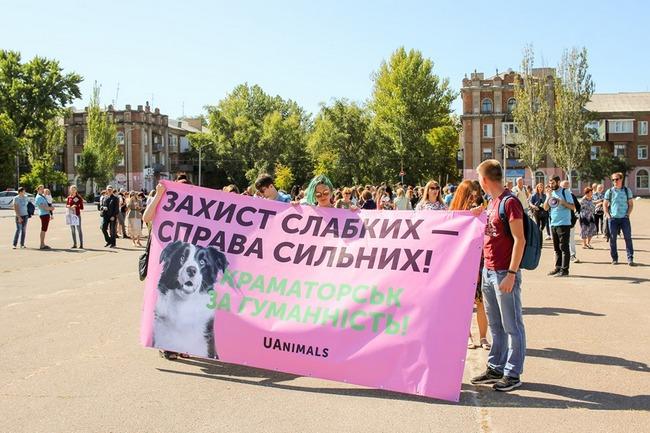 В Северодонецке организовали марш в защиту животных