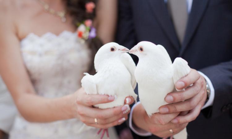Легко ли переселенцам пожениться?