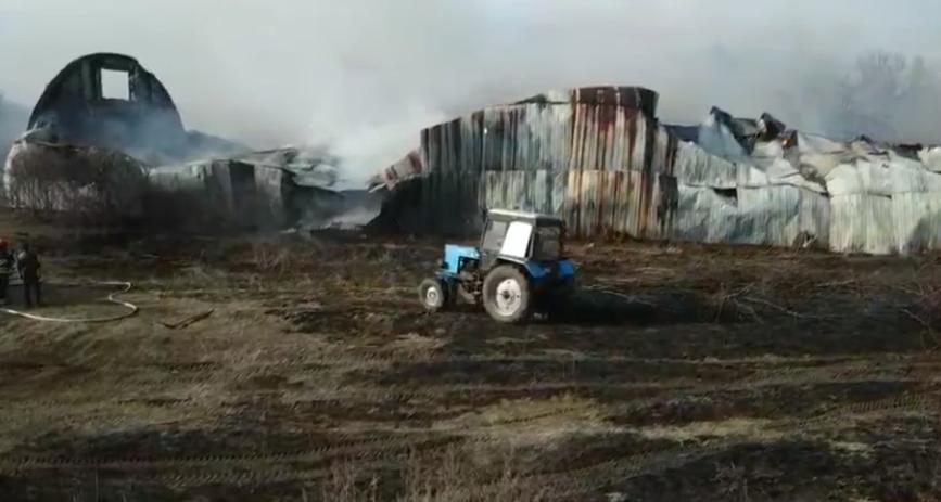 Пожар в Луганской области уничтожил склад с 800 тоннами подсолнечника
