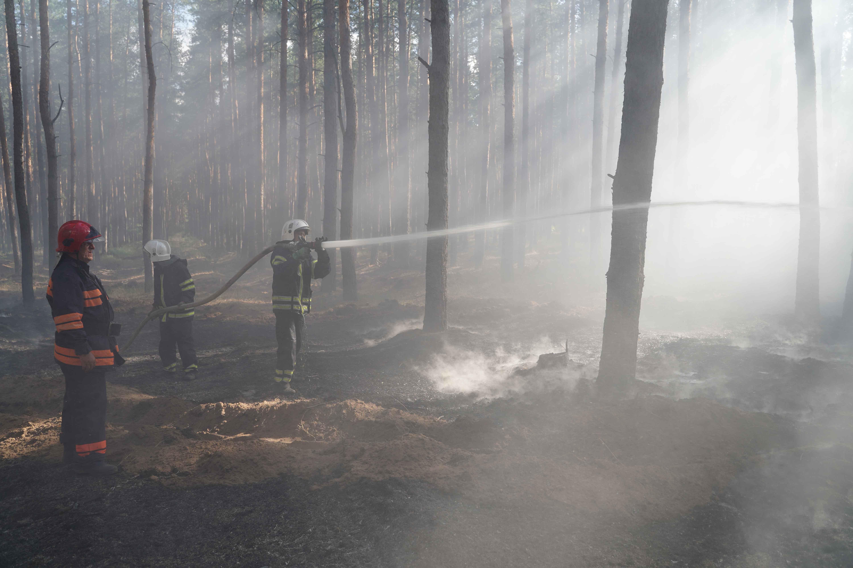 Спустя три дня, лесной пожар в Луганской области локализировали