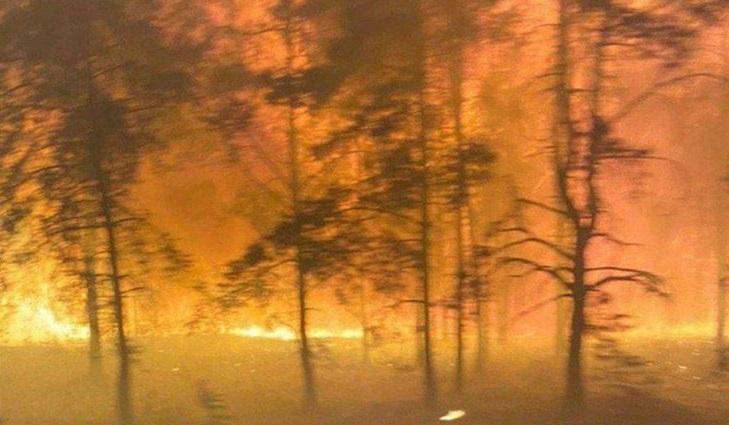 Из Северодонецка перекрыли выезд на Новоайдар из-за пожаров