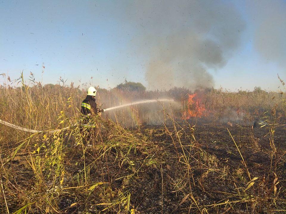 На Луганщине снова был пожар, но его быстро потушили