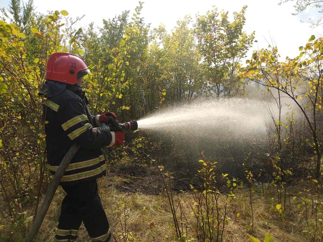 В Луганской области случился масштабный пожар
