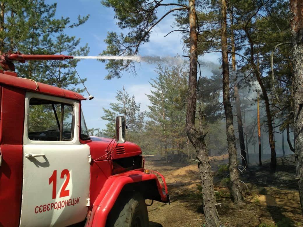 В Луганской области снова горит лес