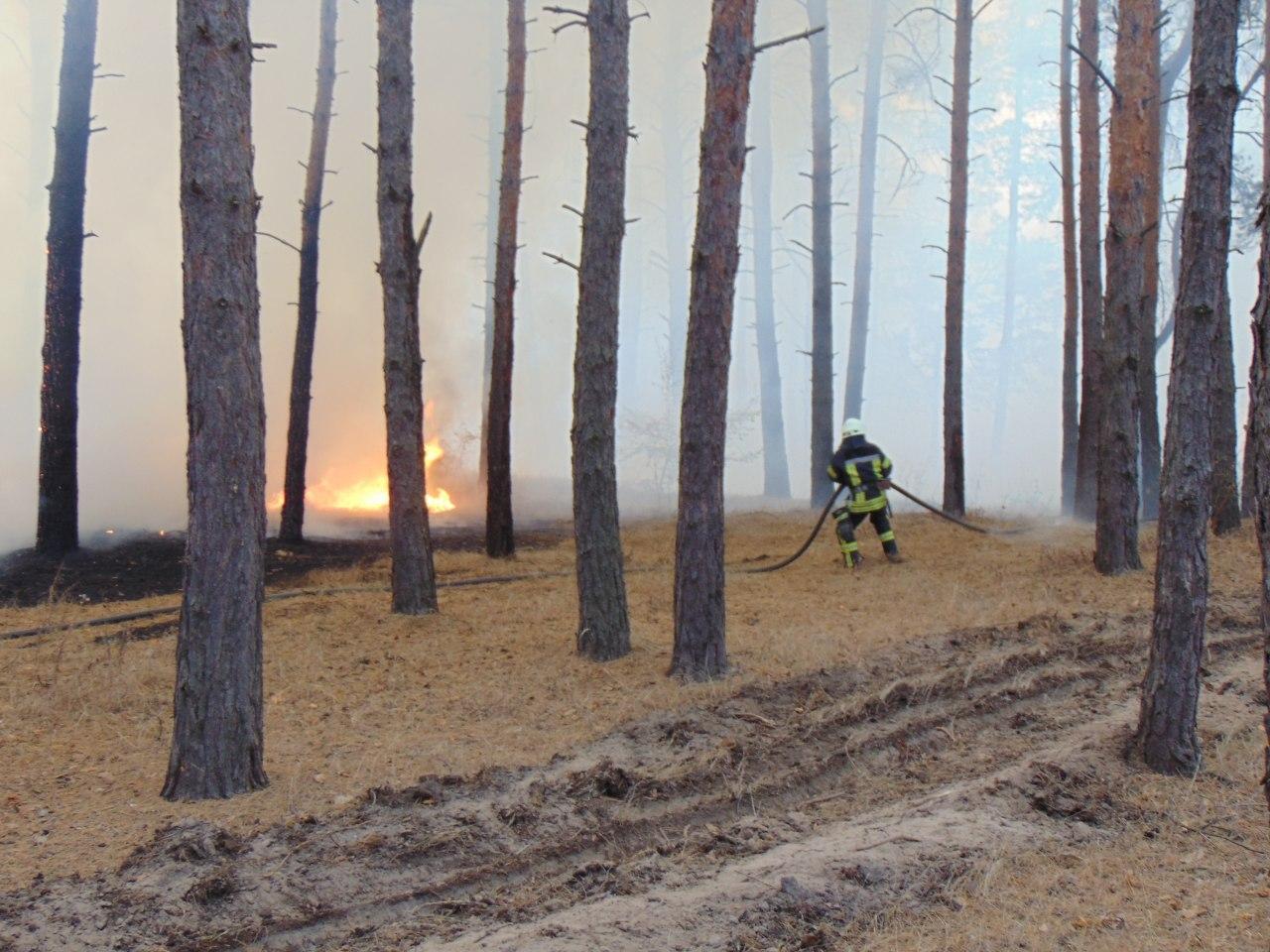 Писали отчеты, а пожары не тушили. В Луганской области шестерым сотрудникам ГСЧС объявили подозрение