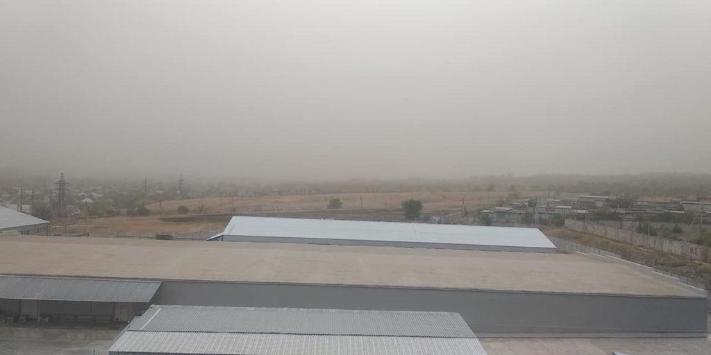 По Луганску прошла песчаная буря. Ветер ломал деревья и валил заборы