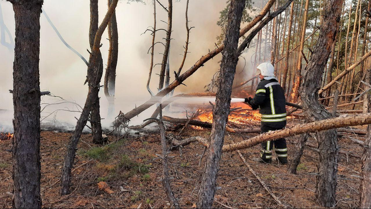 В Верховной Раде хотят отстранить руководителя Луганской ГСЧС из-за масштабных пожаров летом и осенью