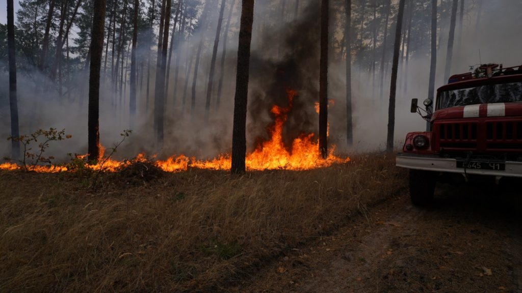 В Луганской области из-за пожаров перекрывают дорогу