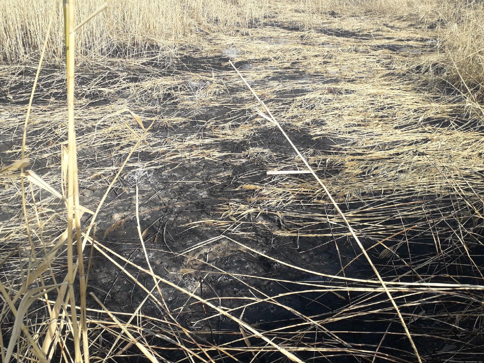 Под Горловкой нашли дыру в земле, из которой пробивается дым и неприятный запах