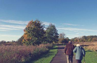 Требования к пенсионному возрасту снова изменят. Кто в следующем году останется без пенсии