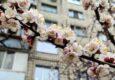 Выходные в мае. Сравниваем, сколько будут отдыхать в Луганске, Донецке и Киеве