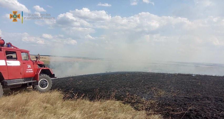Под Счастьем горела сухая трава. Пожар не могли потушить больше пяти часов
