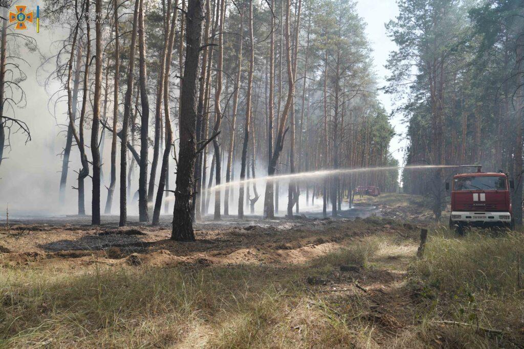 На Донбассе снова начались лесные пожары. Огонь полыхает по обе стороны линии разграничения