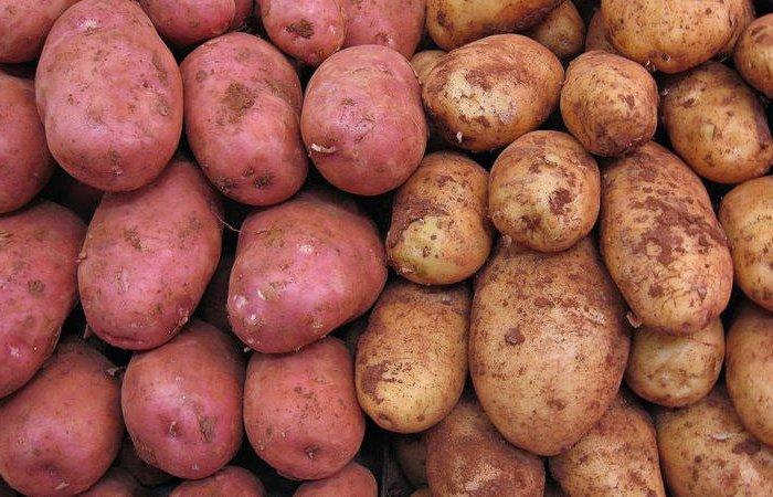 В «ДНР» признали, что цены на картофель выросли необоснованно, но своей вины не видят