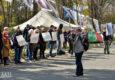 «ДНР» заставила учителей и воспитателей идти на митинг под штаб ОБСЕ